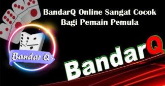 BandarQ Online Sangat Cocok Bagi Pemain Pemula